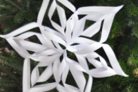 Woven Paper Snowflake Workshop thumbnail Photo