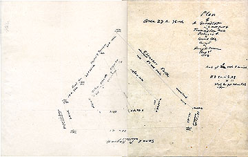 117 Plan of a Woodlot in the North Part of Framingham Mass. Belonging to Sarah Stacy ... Aug. 3, 1853
