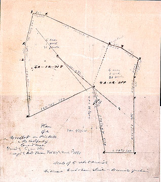 121a Plan of a Woodlot on Pine Hill, in the East Part of Concord Mass. Owned by Cyrus Stow ...