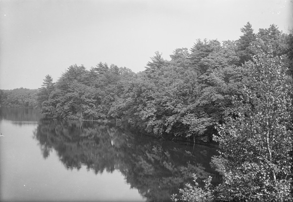 Herbert Wendell Gleason.  South shore, Walden Pond