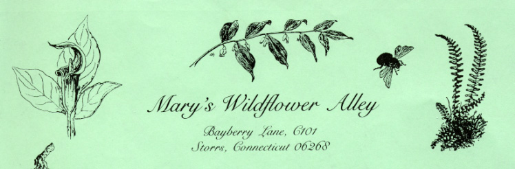 Mary Sherwood letterhead