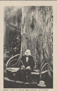 Bronson Alcott at Orchard  	House, Concord, Massachusetts; early 20th century