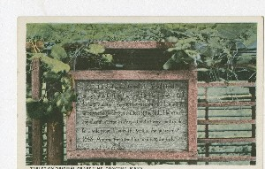 Tablet on Original Grape  	Vine, Concord, Mass.; early 20th century
