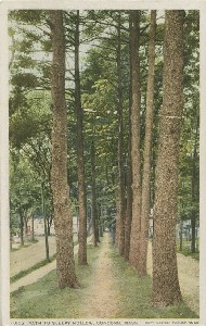 Path to Sleepy Hollow;  	early 20th century