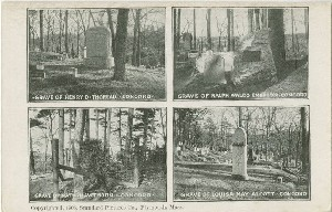 [Graves of Concord  	Authors]; 1906 (copyright date)